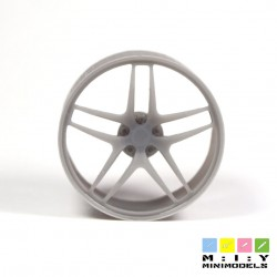 TWS concave wheels