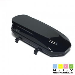 Thule Audi model 1 roof box